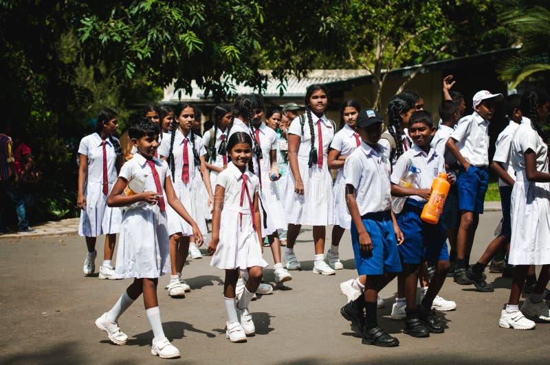 Uniforme scolastico Bei scolari attivi e felici La Sri Lanka immagini stock
