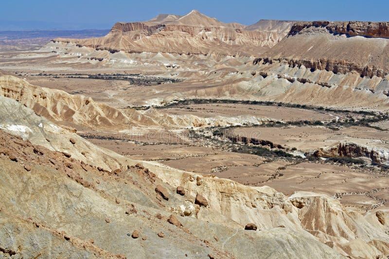 Unik bergöken Pittoreska sikter av Ein Avdat och den Zin dalen Negev, öken och semidesert region av sydliga Israel arkivfoto