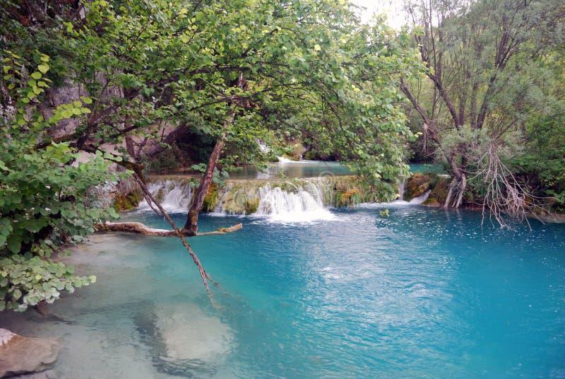 Unikalni naturalnej rezerwy Plitvice jeziora obraz royalty free
