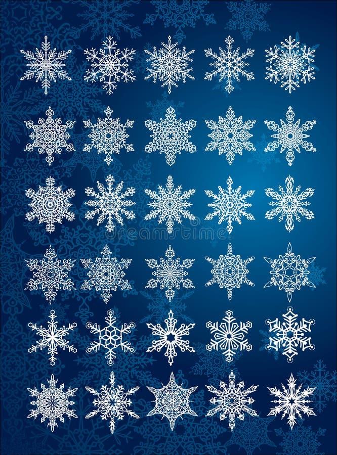 unikalnych setów 6 30 wszystkie różnych płatków śniegów royalty ilustracja