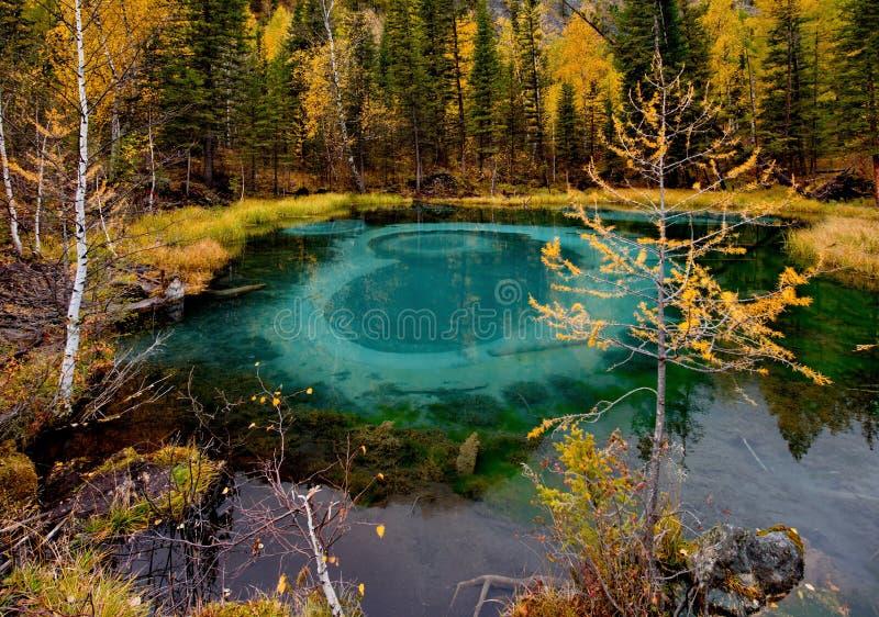 Unikt, i natur och att förbluffa skönhetGeyser sjön royaltyfri fotografi