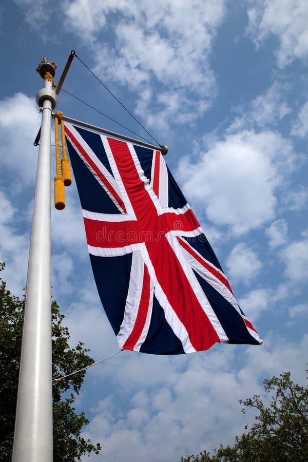 Download Union Jack flag stock photo. Image of union, tree, united - 19509242