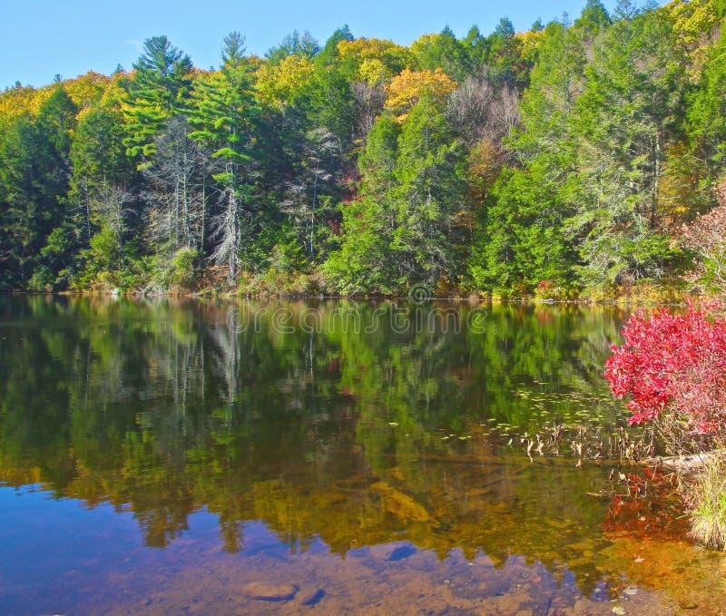 Union le Connecticut de parc d'état de cavité de Bigelow photographie stock libre de droits