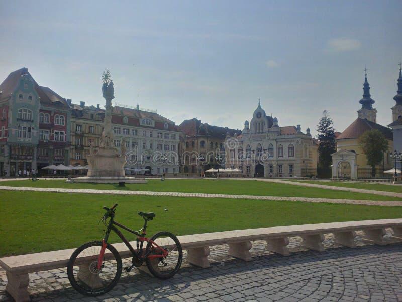 Union Square från Timisoara arkivfoton
