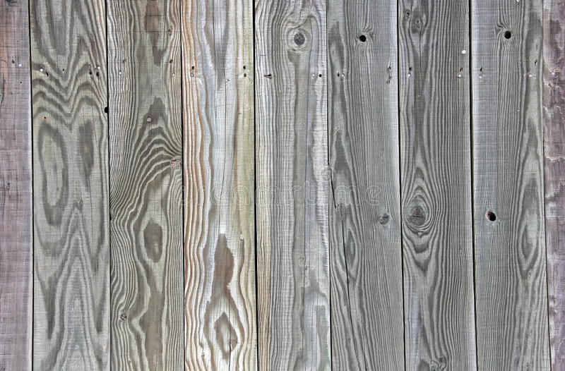 Uniq vert de panneau de fond de barrière de Grey Tinted Wood image libre de droits