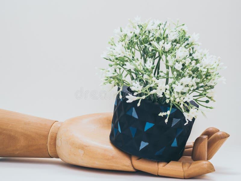 Unique black geometric planters. Painted concrete planters for home decoration royalty free stock image