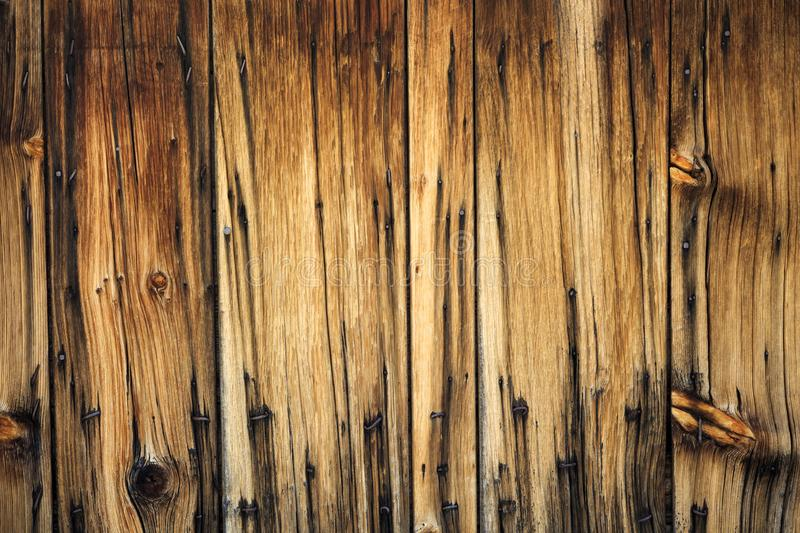 Old unique faded gray wood background. Unique black and gray wood weathered background with nails royalty free stock photo