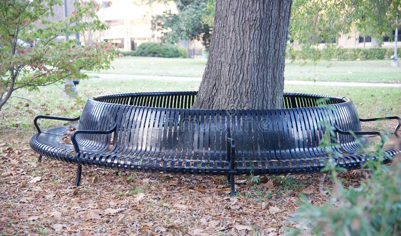 Unique City Park Bench. Unique multiple seating capacity city park bench around a tree royalty free stock photography