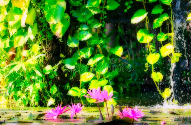 Fantasy nature fountain with water lily stock photo