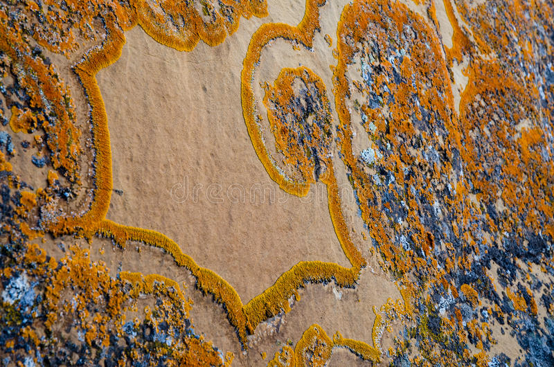 Unique lichen pattern on rock royalty free stock photography