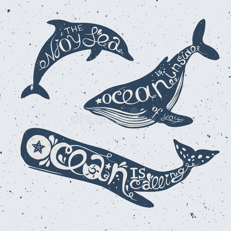 Unique nautical lettering with whales and dolphin stock illustration