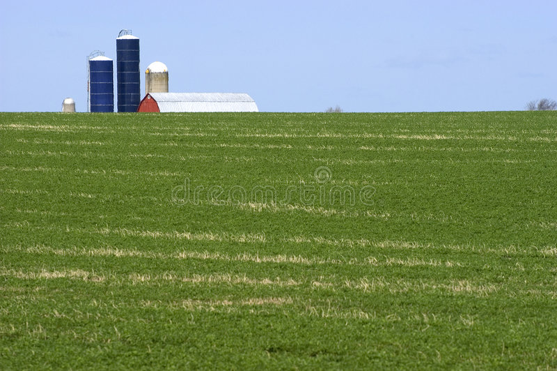 Unique Perspective of Dairy Farm and Hay Field stock photography