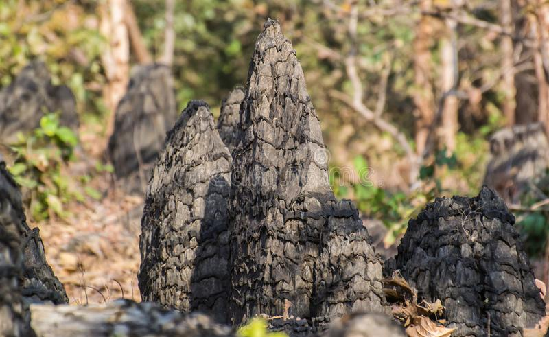 Pointed Rock Formation in Central India. Unique Pointed Natural Rock Formations in the Forest of Central India which have layers, scales on them royalty free stock photo
