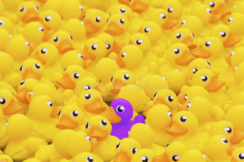 Unique purple toy duck among many yellow ones. Standing out from royalty free stock photography