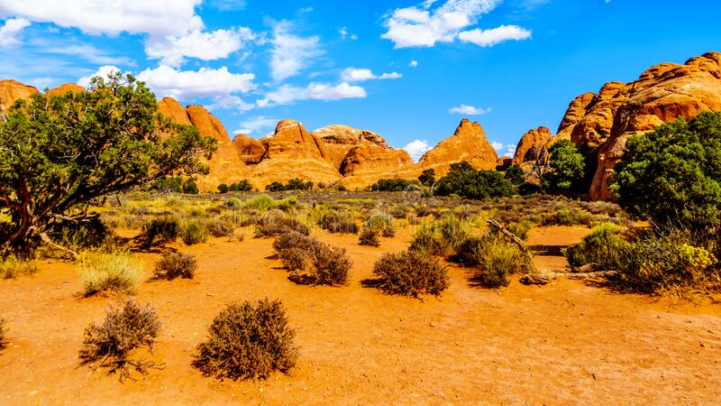 Unique Red Sandstone Pinnacles and Rock Fins at the Devil`s Garden in Arches National Park royalty free stock image