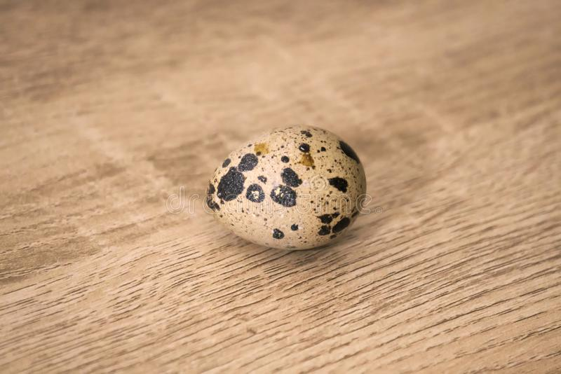 A single quail egg on a wooden board background. royalty free stock image