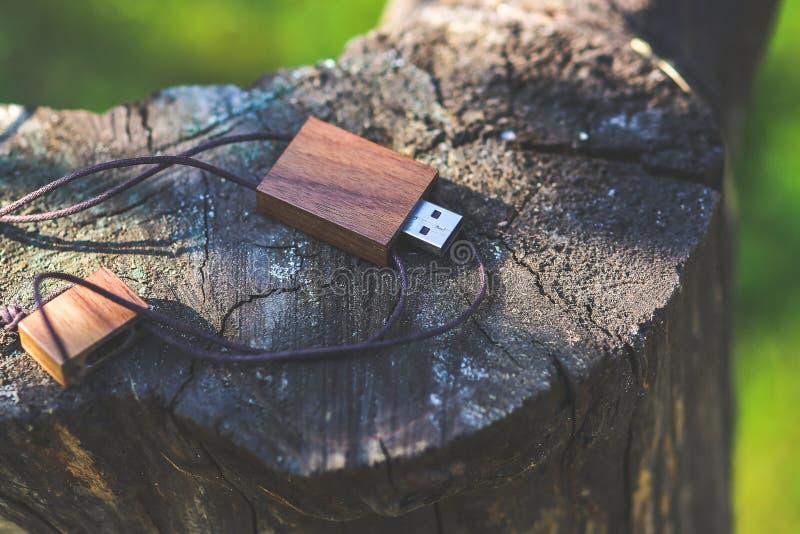 Unità flash USB in legno immagine stock libera da diritti