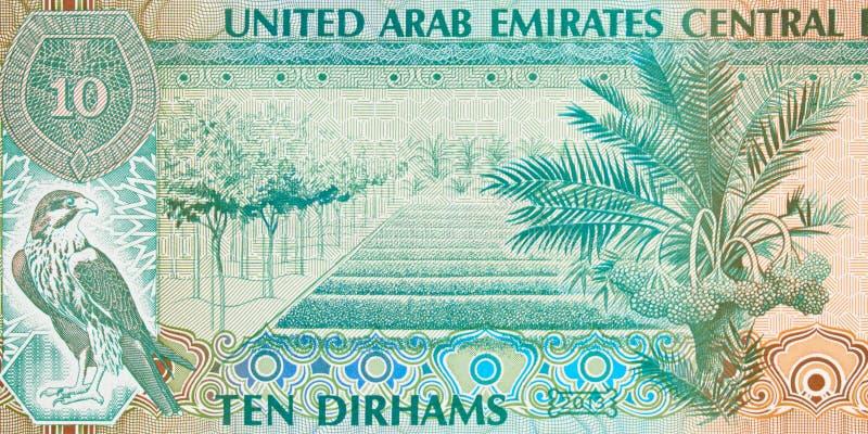 United Arab Emirates ten dirham banknote fragment, UAE Emirati m. Oney closeup royalty free stock photo