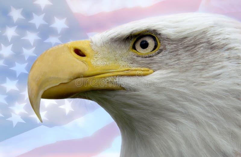 United States Of America Royalty Free Stock Photo