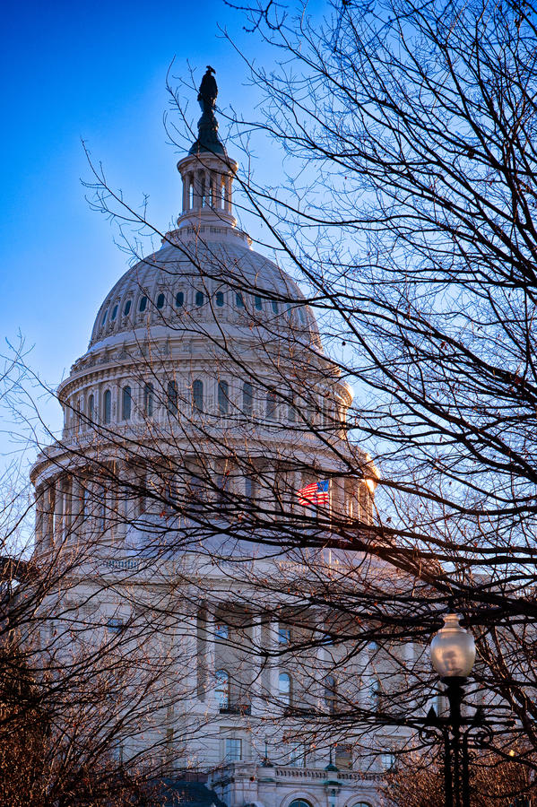 United States Capitol, USA royalty free stock photos