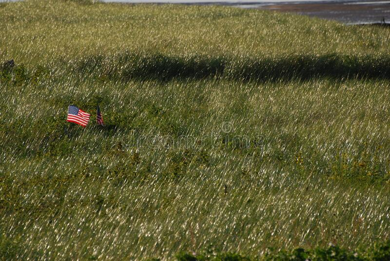 United States Flag on Green Grass Field stock image