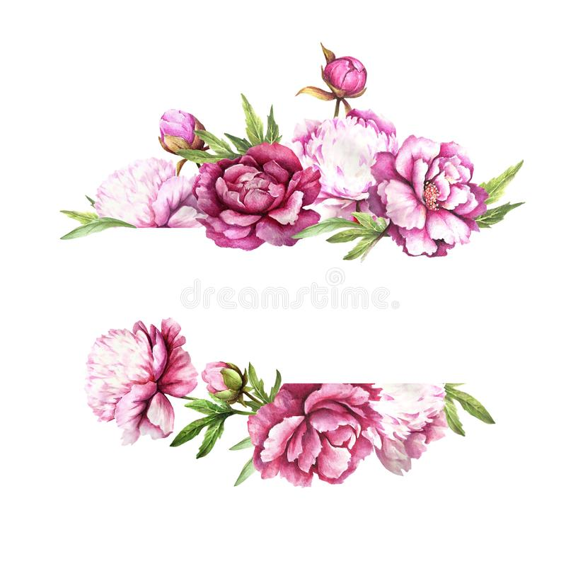 Universal background with peonies. Hand draw watercolor illustration. Universal background with peonies. Hand draw watercolor illustration stock images