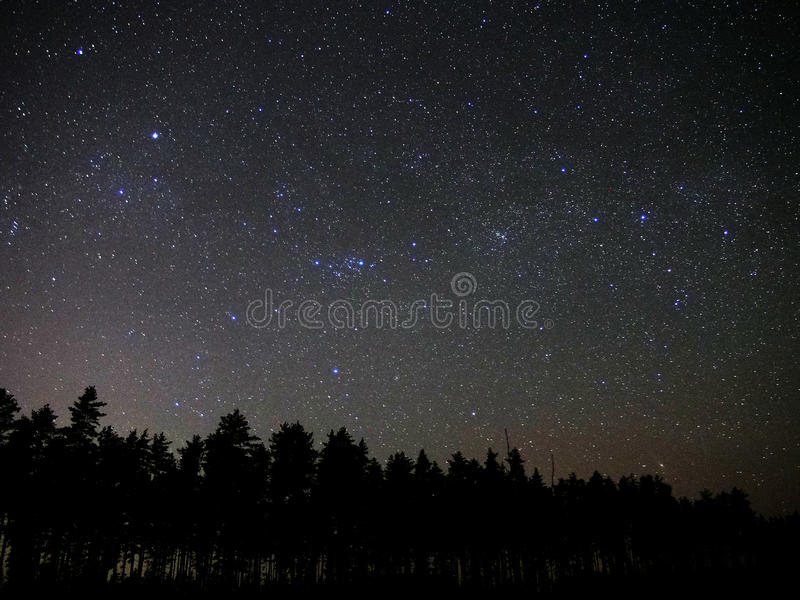Universe stars and night forest atmosphere perseus constellation royalty free stock images