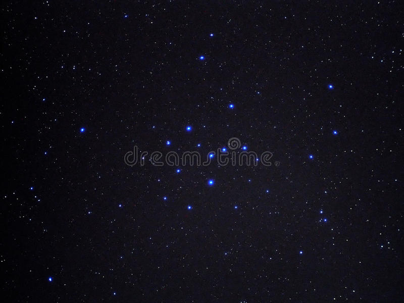 Night sky stars summer cluster IC4665 royalty free stock photography