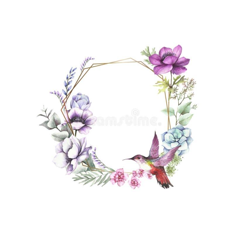Universell bakgrund med anemoner, eukalyptuns och pippin Illustration f?r handattraktionvattenf?rg stock illustrationer
