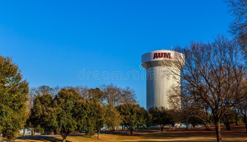 Universidad castaña Montgomery Water Tower en Alabama foto de archivo libre de regalías