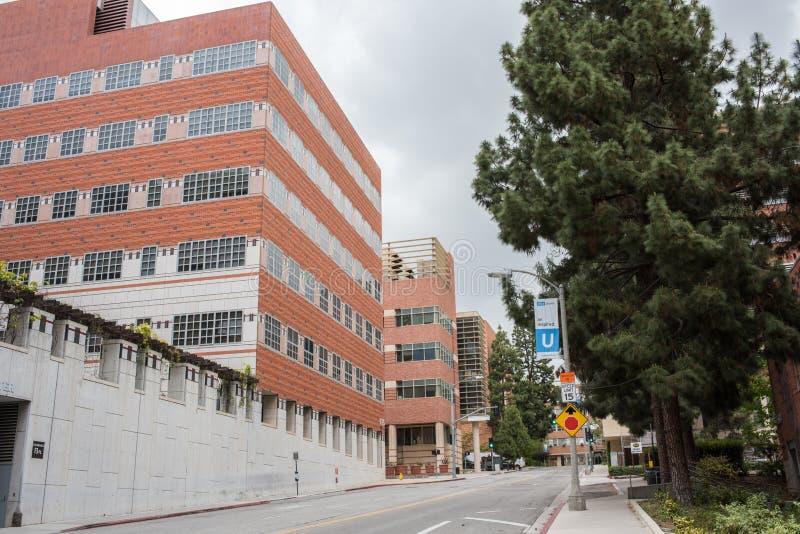 Universidad de California, campus de Los Ángeles UCLA fotografía de archivo libre de regalías