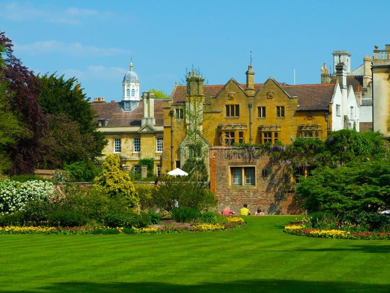 Universidad de Cambridge de los jardines de la universidad de Clare fotografía de archivo libre de regalías