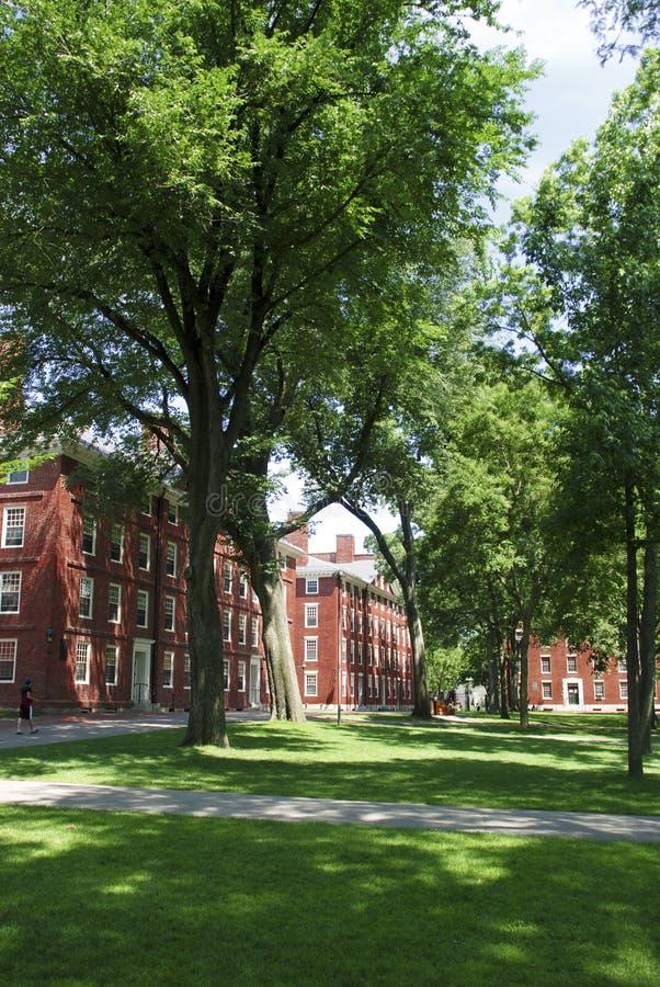 Universidad de Harvard imagenes de archivo