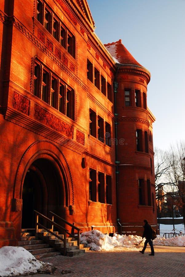 Universidad de Harvard en invierno imagenes de archivo