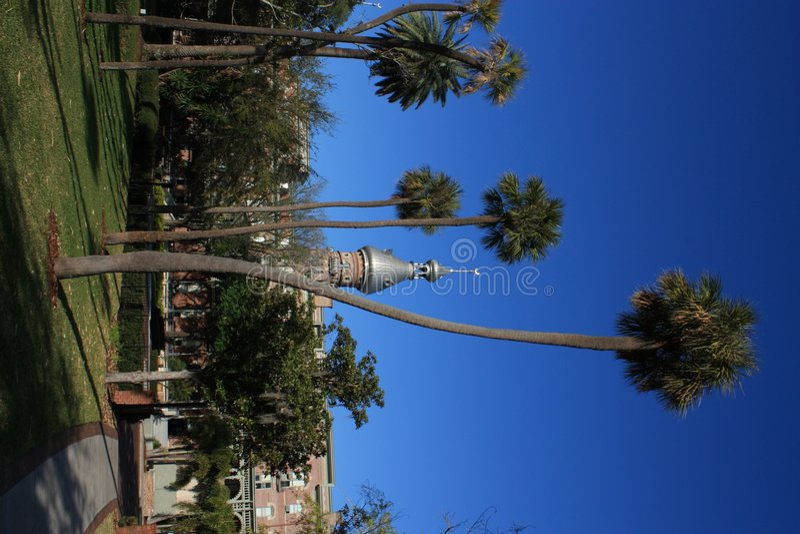 Universidad de Tampa imagen de archivo libre de regalías