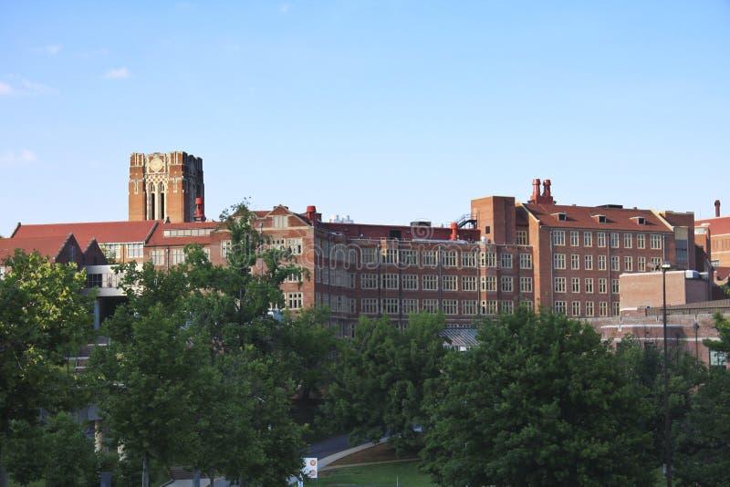 Universidad de Tennessee foto de archivo libre de regalías