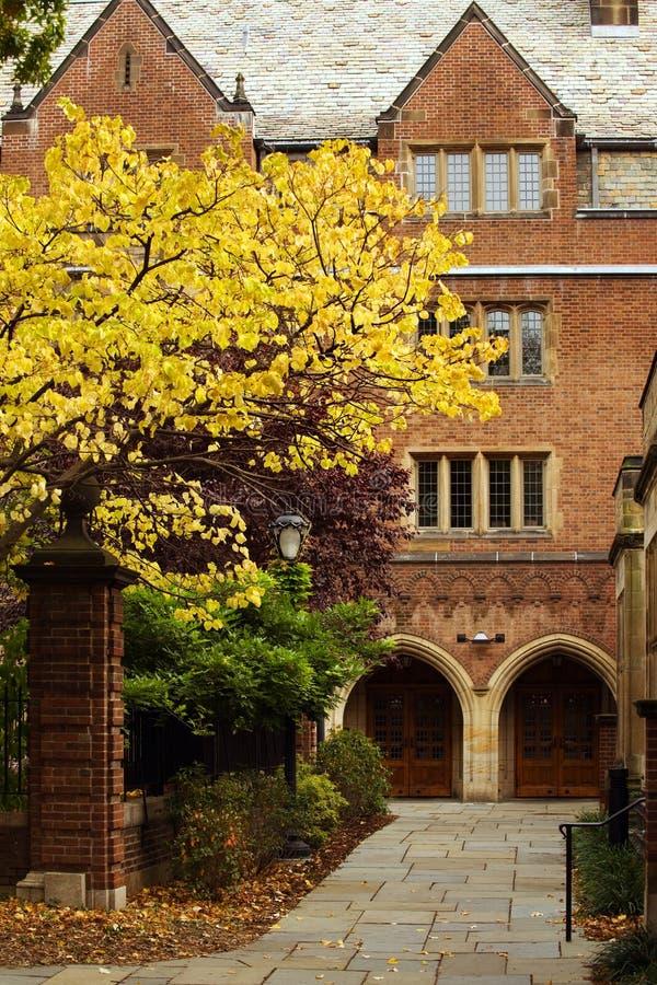 Universidad de Yale foto de archivo