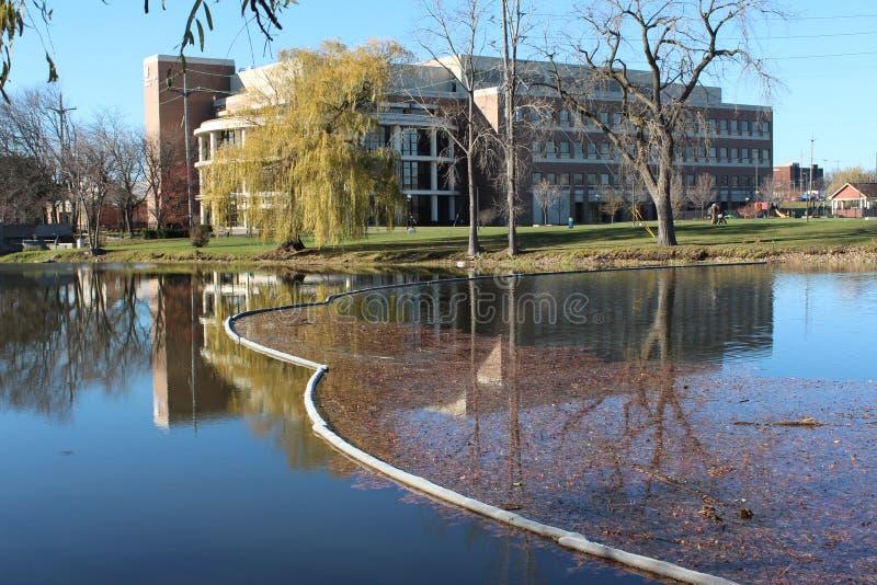 Universidad del Michigan-pedernal imagen de archivo