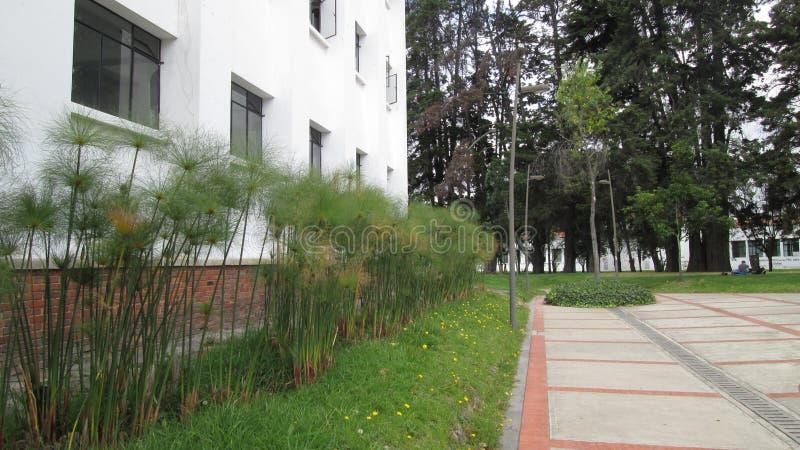 Universidad Nacional De Kolumbien Edificio de QuÃmica stockbilder