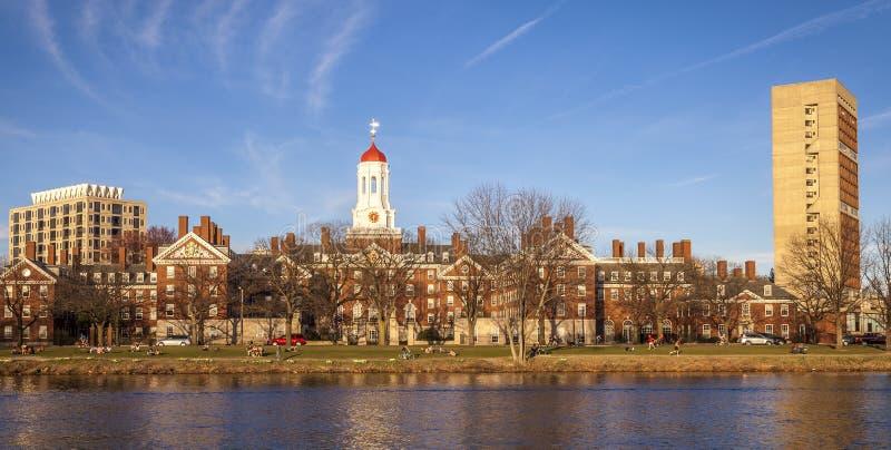 Universidade de Harvard fotos de stock