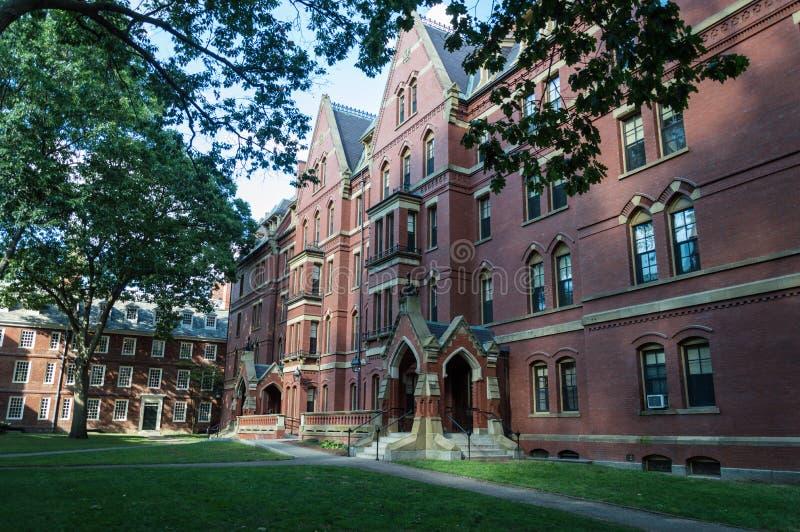Universidade de Harvard foto de stock