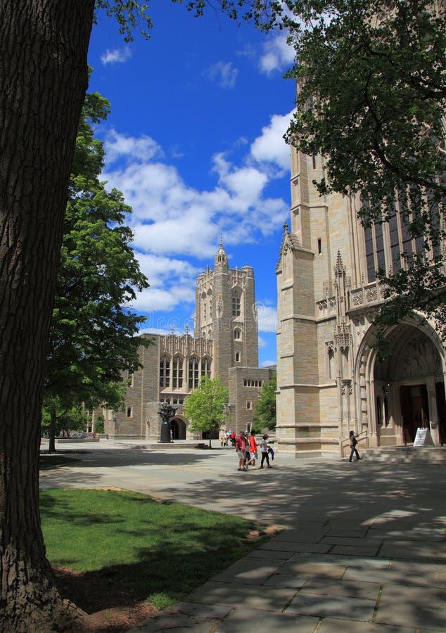 Universidade de Princeton 2 foto de stock royalty free