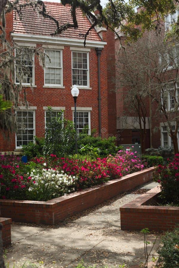Universidade do Grifo-Floyd Salão de Florida imagens de stock royalty free