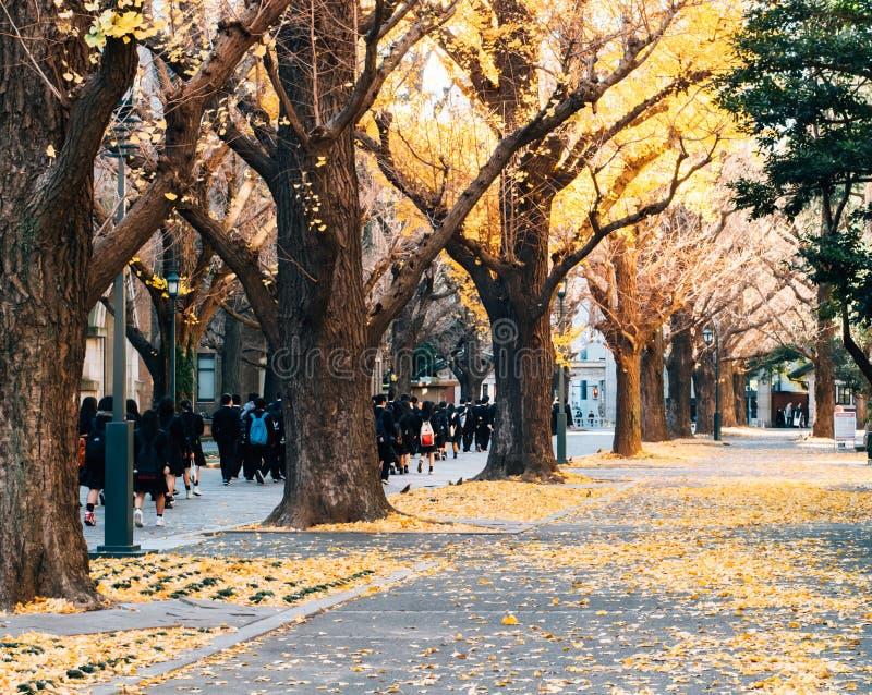 A universidade do Tóquio, Japão imagens de stock