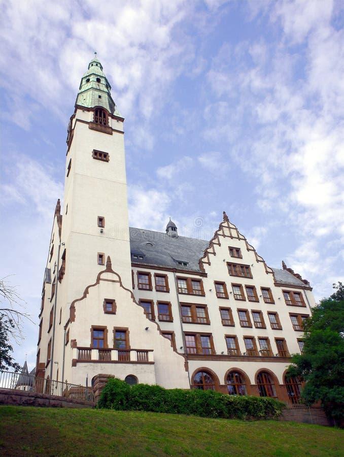Universidade médica de Pomeranian imagens de stock royalty free