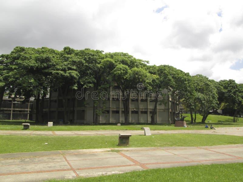 UNIVERSITÀ CENTRALE DI VENEZUELA UCV CARACAS VENEZUELA piacevole fotografia stock libera da diritti