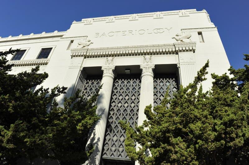 Università di Berkeley, batteriologia, U.S.A. fotografia stock