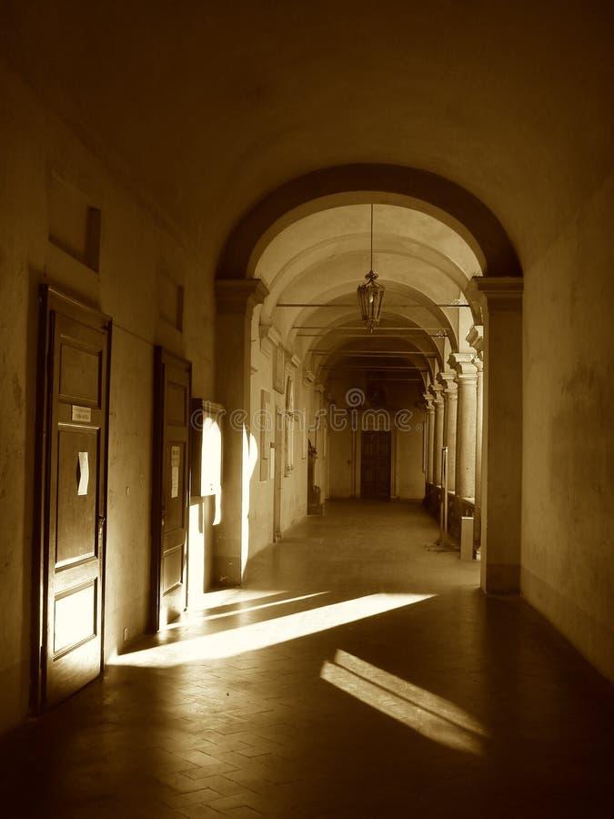 Università di Pavia fotografia stock libera da diritti