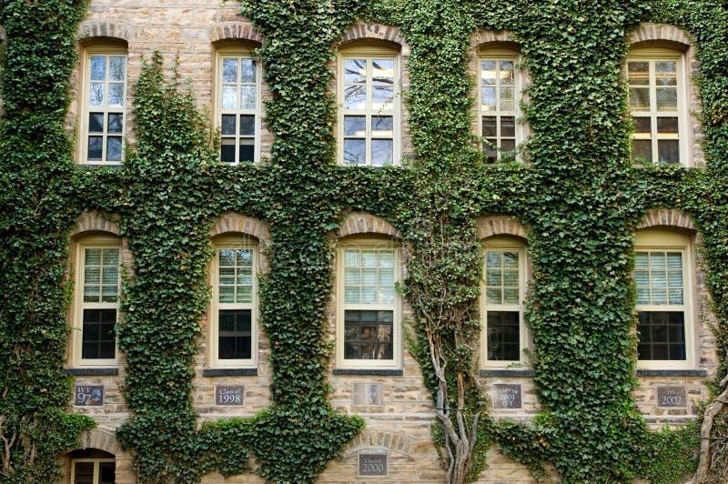 Università di Princeton immagini stock