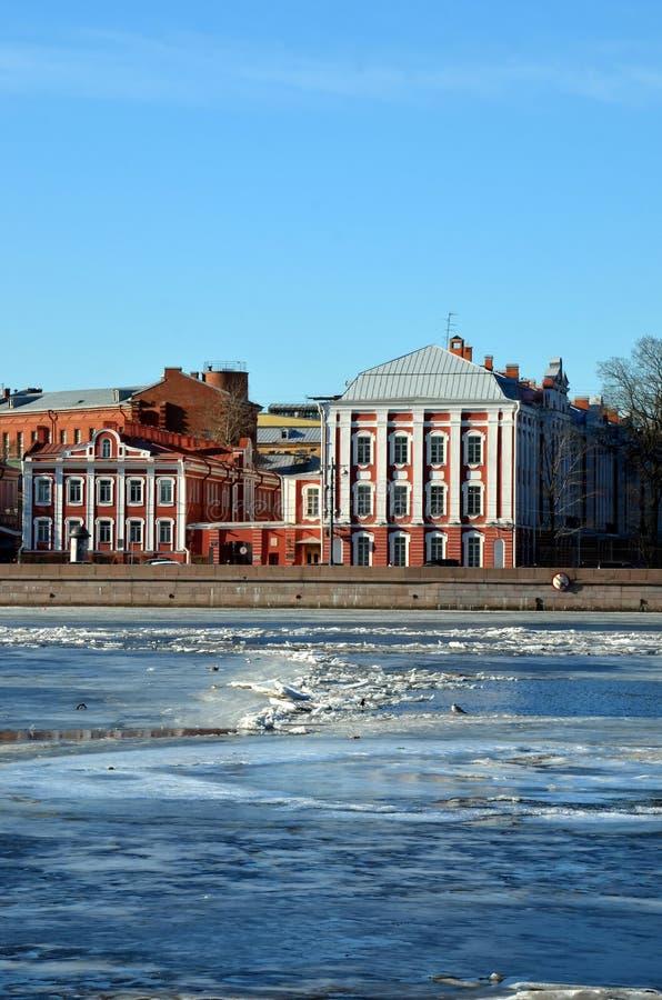 Università di Stato di St Petersburg fotografia stock libera da diritti